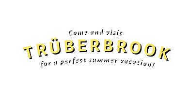 Trüberbrook è disponibile per Nintendo Switch, PlayStation 4 e Xbox One