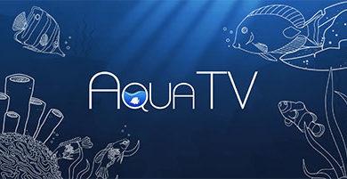 Recensione Aqua TV – Nintendo Switch